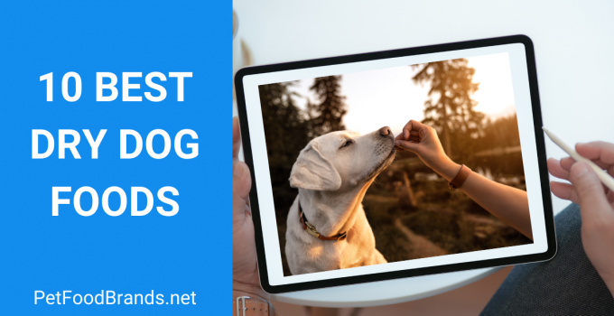 Best Dry Dog Foods – Top Picks and Buying Guide (2021)