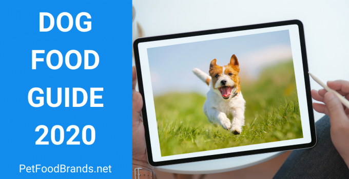 Complete dog food guide for beginners (2021)