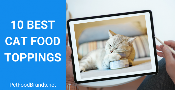 BEST CAT FOOD TOPPINGS