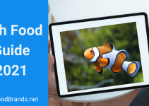 Fish Food Guide 2021 – How to Choose the Right Fish Food?