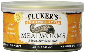 Fluker's Gourmet-Style Mealworms Reptile Food
