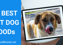 Best Wet Dog Food – 10 Top Picks and FAQs (2021)