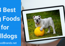 Best dog foods for Bulldogs