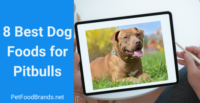 8 Best Dog Food for Pitbulls + Buying Guide (2021)