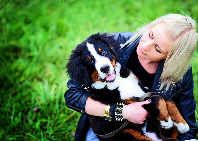 pet ownership during the pandemic