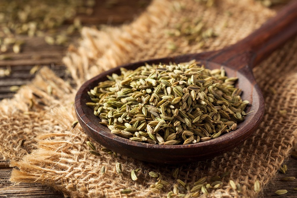 can dogs eat anise seed?
