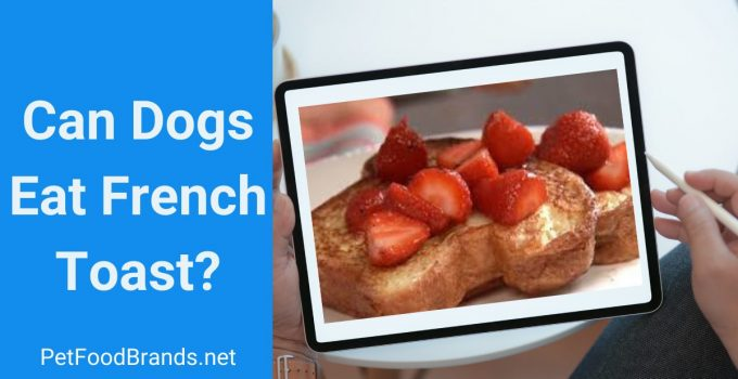 Can dogs eat French toast
