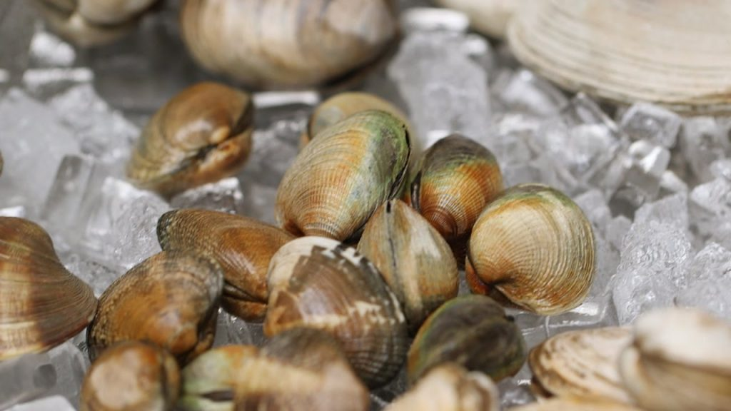 cleaning shellfish