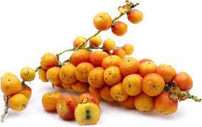 jelly palm fruit